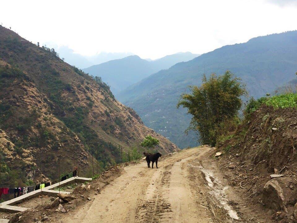 Треккинг к Эвересту - Новый друг по пути в Сатэ