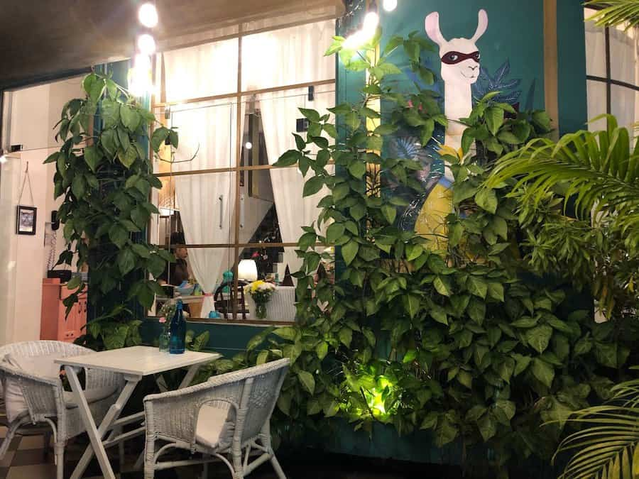 Альпака кафе - атмосферное место в центре Нячанга