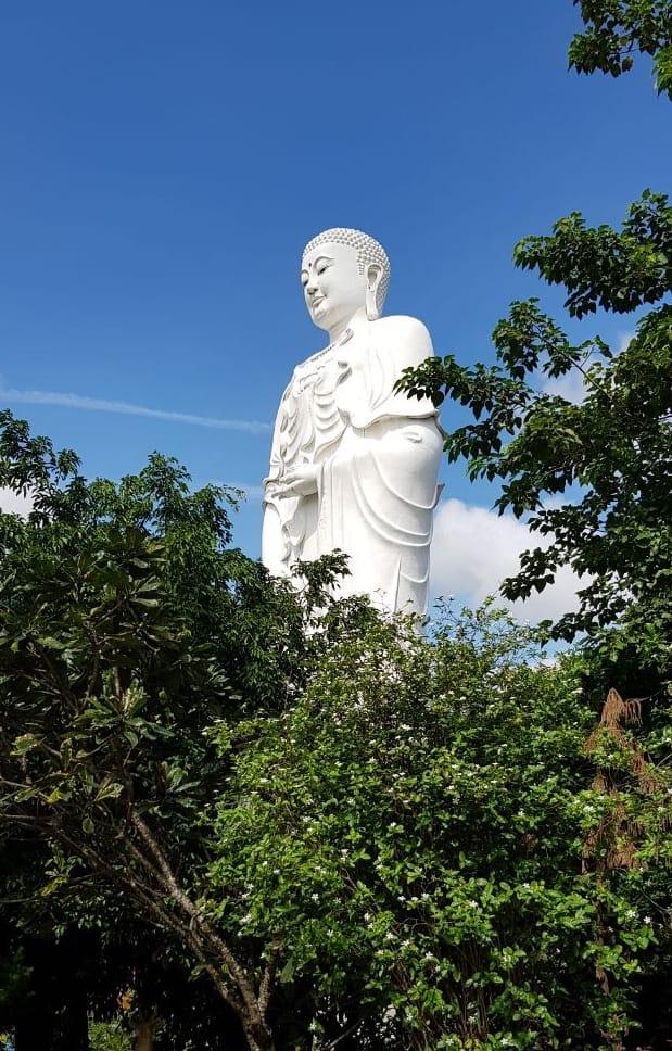 Будда Амитабхи - Chùa Tòng Lâm Lô Sơn (Chùa Đá Lố)